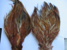 chinese cock necks brown red game x 2 hackle feathers flytying materials