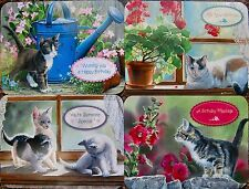 CHRISTIAN FAITH SCRIPTURE BIRTHDAY CARDS SET/4 FAST USA SHIPPING!  #1 CAT KITTEN