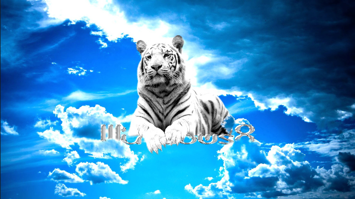 Tigerretail