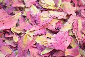 Peony, Natural Wedding Confetti, Biodegradable Natural Confetti Petals 1Litre