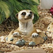 Garden Lawn Patio Kalahari Meerkat Statues: Out Of Hole Decor Outdoor Decoration