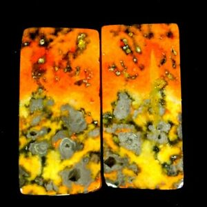 22.85Cts 11X23X4mm 100% Natural Bumble Bee Jasper Rectangle Pair Cab Gemstone