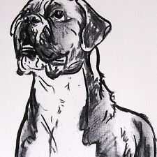 Charcoal BOXER DOG drawing lines Muscular and Attentive Art Print