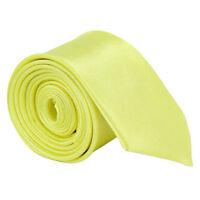 Classic Mens Slim Skinny Wedding Solid Plain Satin Tie Necktie color