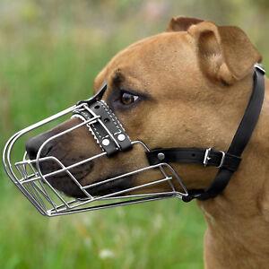 PitBull Dog Muzzle AmStuff Pit Bull Metal Muzzles Adjustable Leather Straps