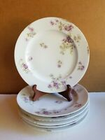 THEODORE HAVILAND LIMOGES FRANCE FLORAL PATTERN DINNER PLATES 6pc