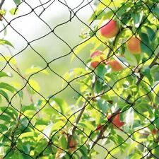 Garden Antibird Netting Allotment Doesn't Tangle And Reusable Lasting Protection