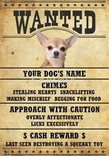 CHIHUAHUA DOG Wanted Poster Fridge Magnet