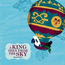 A King Seen from the Sky by Bruno Gibert 2015 Hardcover BRAND NEW