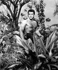 8x10 Print Gordon Scott Tarzan the Magnificent 1960 #GS993
