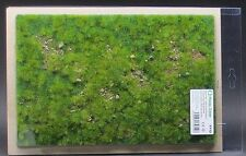Model Scene F712 - Premium Grass Mat (early summer stony steppe) diorama scenery