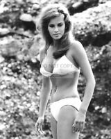 8X10 PUBLICITY PHOTO RAQUEL WELCH ACTRESS AND SEX-SYMBOL PIN UP RT661