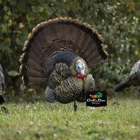 ZINK CALLS LCD AVIAN X TROPHY TOM TURKEY DECOY AND FAN MOUNT NEW!