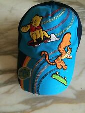 Disney Winnie the Pooh & Tigger Skateboard embroidered  youth hat one size