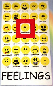New FEELINGS Chart MOOD MAGNET: How I Feel Emotions Emoticons Emoji Smiley Faces