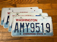 "Authentic Washington State License Plate with the name ""Amy."""