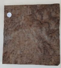 Consécutives Sheets of American Burr Walnut Vernis 21 x 28 cm AM#65 marqueterie