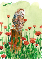 ACEO Limited Edition-A owl in a poppy field, Art print of an original watercolor