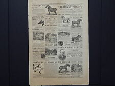 The Breeder's Gazette, Advertising Page, Cows, Horses, c.1880's #02