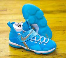 Nike Lebron 14 XIV HWC GS SZ 5.5Y Rick Flare Nature Boy WWE WWF Blue AA3258-404