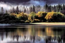 AUTUMN LIGHTS - FOREST POSTER 24x36 - NATURE SCENIC LAKE 34231