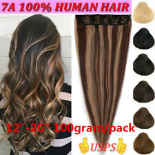 "12""-24"" 100g Remy Clip In Human Hair Extensions 3/4 Full Head Weft Straight"