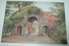 1908 Color Print THE RUINED ARCH Royal Botanical Gardens Thomas Mower Martin RCA