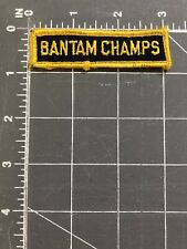 Vintage Bantam Champs Patch Youth Hockey Division League Championship Teams UFC