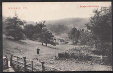 Gloucestershire Postcard - Sapperton Valley   DR381