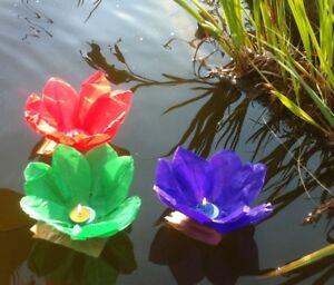 10 x Wasserlaternen, Wasserblumen, Schwimmblumen verschiedene Farben