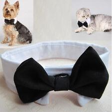 Pet Dog Cat Pet Puppy Trendy Bowknot Neck Tie Necktie Black Gentle Collar Band