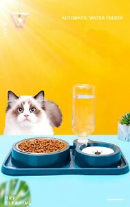 Double Dog Cat Bowls Stainless Steel And Automatic Water Dispenser