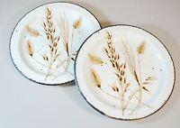 2X Midwinter Stonehenge Wild Oats BREAD & BUTTER PLATE - Dessert or Salad Plate