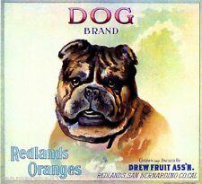 Redlands California English Bulldog Dog Orange Citrus Fruit Crate Label  Print