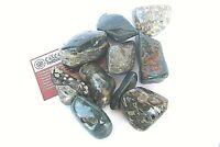 Green Ocean Jasper One Tumbled Stone 45mm Reiki Healing Crystal Madagascar