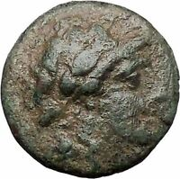 Antiochus I Soter  Seleucid Kingdom RARE Ancient Greek Coin APOLLO Tripod i47588