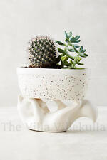 """New Anthropologie Fantastic Fox """"Lake House"""" Planter ~ Adorable & Sold Out!"""
