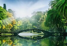 Wallpaper for bedroom and Living room walls 366x254cm Bridge in the Jungle green