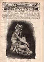 1878 Scientific American Supp November 30 - False hair; Peru antiquities;Zealand