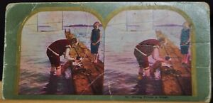 """Antique Stereograph Card - #14, """"Giving Prince a Wash""""- 1900's"""