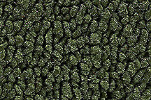 1970 Dodge Challenger Automatic Carpet 30 Dark Olive Green Loop Molded ACC