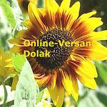 online-versand-dolak