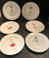 CRATE AND BARREL SET OF 6 APPETIZER/DESSERT PLATES WITH COCKTAIL MOTIF