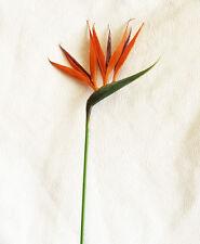 "26"" Small BIRD OF PARADISE ~ Spray Tropical Silk Wedding Flowers Centerpieces"