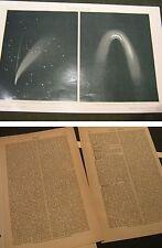 Holzstich von 1898-Kometen Bericht-Abb.Donatis Komet Sichtung 1858