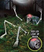 Graveyard Skeleton LED Head Grave Ground Breaker Halloween Party Decoration Prop
