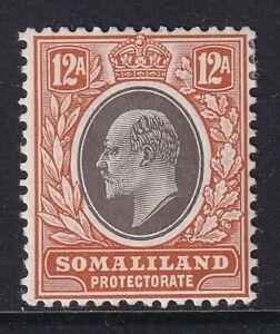 SOMALILAND  EDVII SG53a - 12a grey black & orange buff- mounted mint