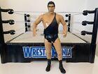 WWE Andre The Giant Wrestling Figure Legend Jakks Classic Superstars WWF