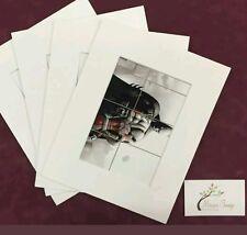 "20x  10x12"" (5X7"" Window) Professional Picture Mounts- Photo Mount Pockets"