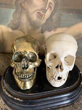 More details for antique vintage brass skull memento mori bronze style metal life size large